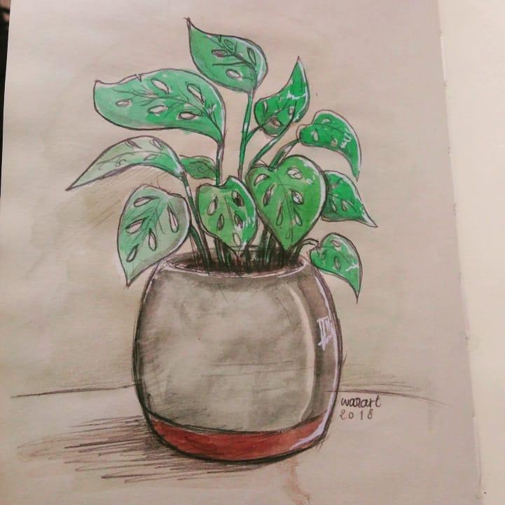 Une plante verte dessinée à l'aquarelle